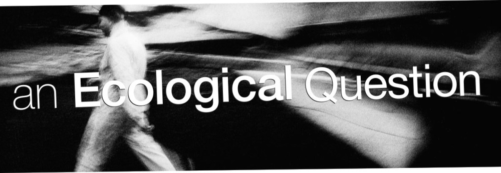 PRIVATE-37 an Ecological Question