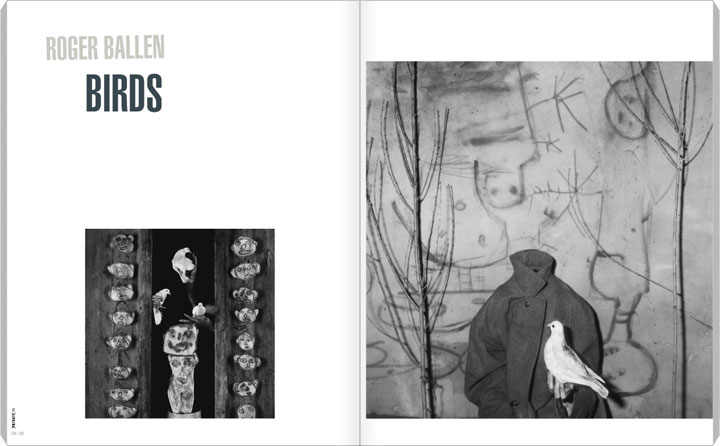 Roger Ballen, Birds