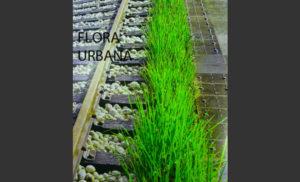 Flora-Urbana