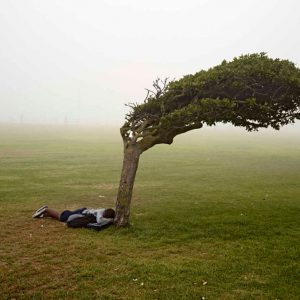 © Pieter Hugo, Green-Point Common, Cape Town, 2013