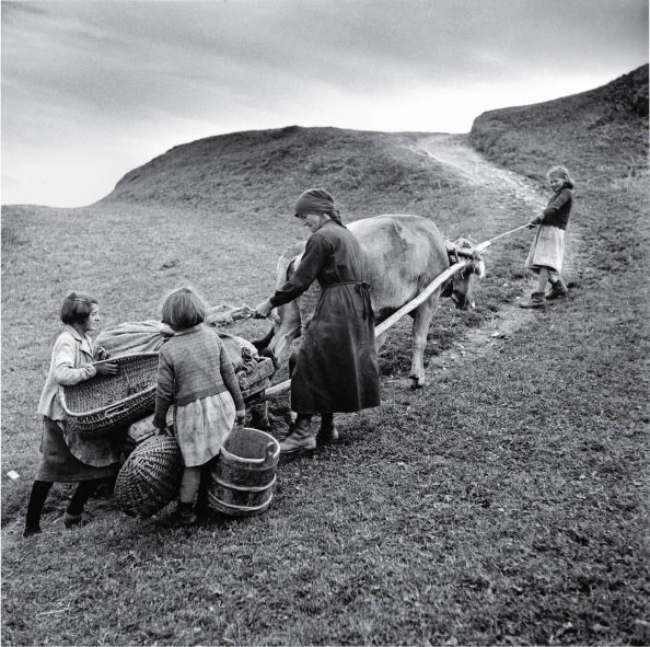 Transporting potatoes in Obersaxen, 1948. © Theo Frey