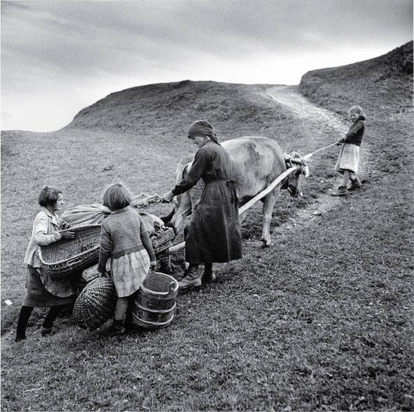 Transporting potatoes in Obersaxen, 1948. © Theo Frey