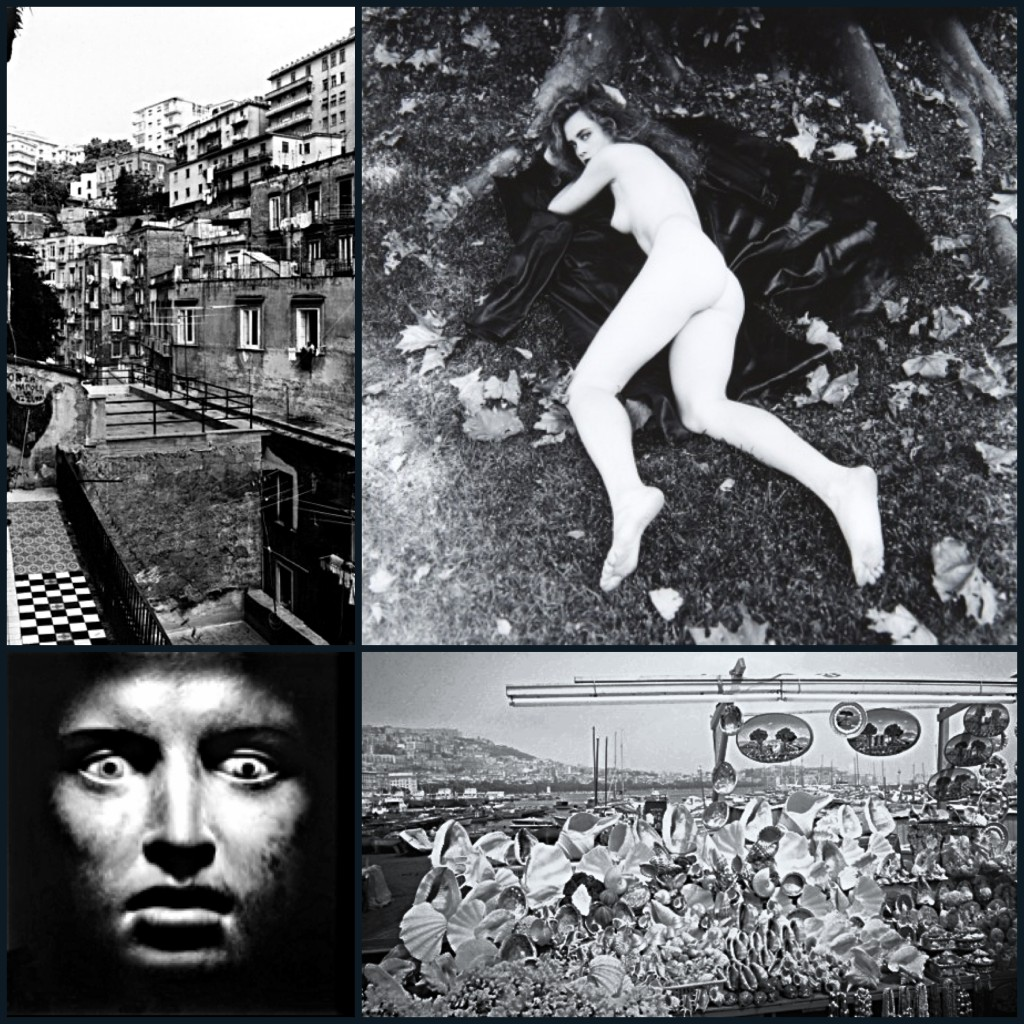 Pictures by (left-right, top-bottom):  Thomas Struth (1988), Helmut Newton (1989), Lee Friedlander (1982), Mimmo Jodice (1986).