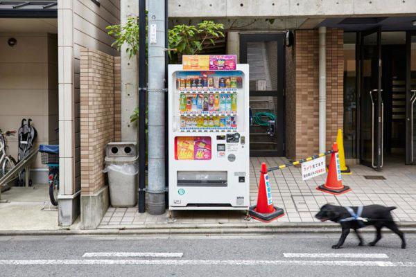 Kyoto, Japan - July 2015