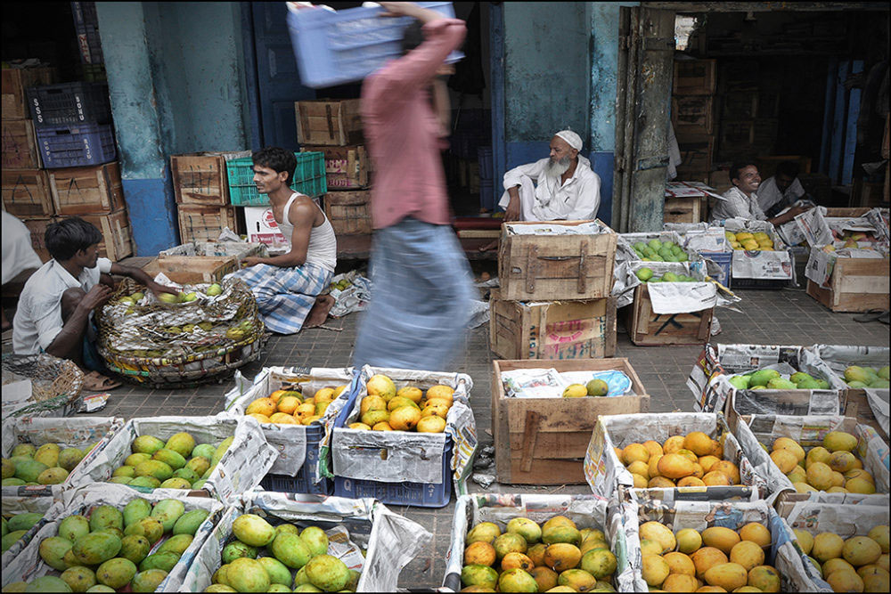 April-May 2015, Kolkata : Different types of mouth-watering Bengal mango varieties like Himsagar, Laxmanbhog, Langra, Gulabkhas and Fazli are being displayed and sold.