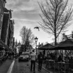 AMSTERDAM, NETHERLANDS - February 2016 - Stroll through the narrow alleys of Red Light District