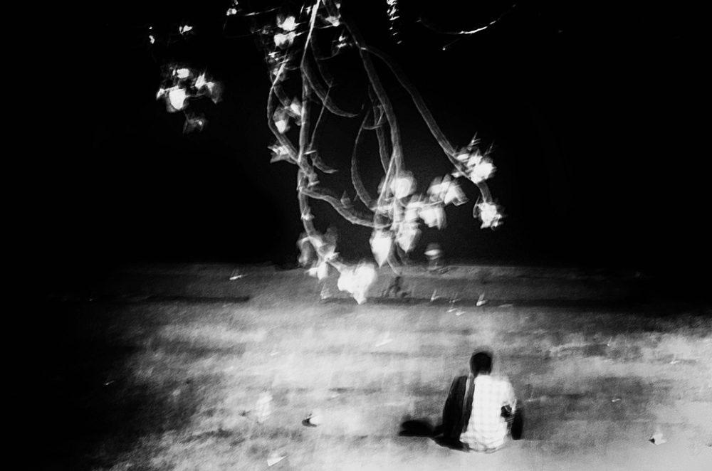Calcutta,India-May 2016.Glittering in Solitude
