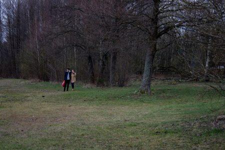 Daugavpils, Latvia - April 2016. In the woods.
