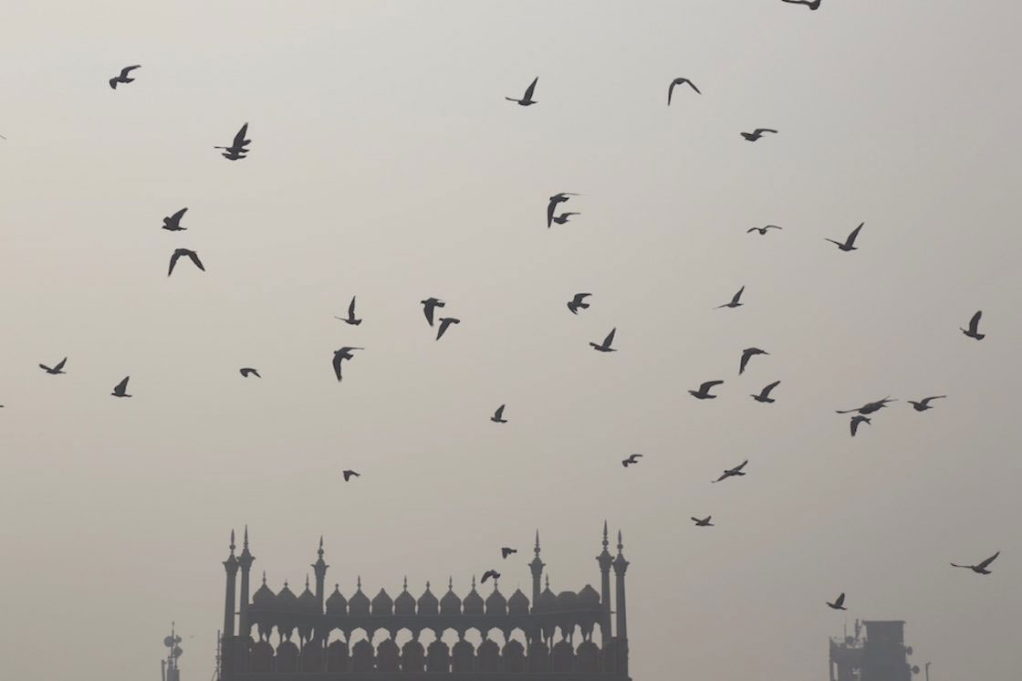 delhi the toxic city photo essay by alice rowsome delhi is currently the world s most polluted city s largest mosque shrouded in pollution during the noon prayer as pollution levels cross the safe