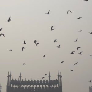 Jama Masjid, Delhi - December 2016. Delhi is currently the world's most polluted city. India's largest mosque shrouded in pollution during the Noon Prayer, as pollution levels cross the safe limit by 17 times.