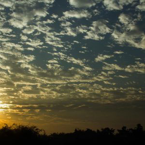 "New Jalpaiguri, India-January 2017- Titled-- "" The beginning of a new day; favored us in a silver lining!"""