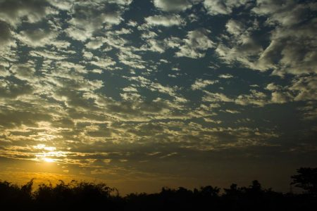 """New Jalpaiguri, India-January 2017- Titled-- """" The beginning of a new day; favored us in a silver lining!"""""""
