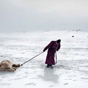 Asia, Mongolia. 18/03/2011. In the photo, 29-year-old Erdene Tuya hauls a sheep lost for the dzud to a small burial ground close to their yurt (gher). In Mongolia's Arkhangai province, the Tsamba family lives on the edge, struggling through harsh winters alongside their herd of sheep. Severe winter conditions, known as dzud, have been responsible for the deaths of half the family's once 2,000-strong herd over the past three winters. Recently, in search of warmer pastures, the Tsambas moved from Bulgan province in the north to this region near a central Mongolian village called Ulziit.