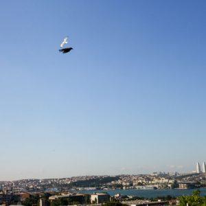 Suleymaniye, Turkey - June, 2013. Foreboding of unrest.
