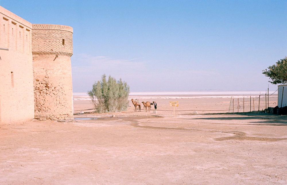 Camels and local outside of the Karvansaray in Maranjab desert, Kashan, Iran, November 2015