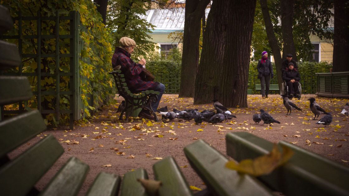 Saint-Petersburg, Russia, October 2016, Old lady feeding birds in the park