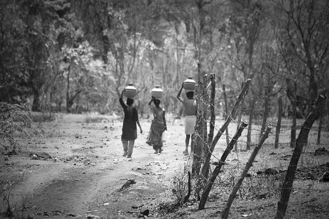 Villagers have to walk almost two to three kilometres to bring their daily usage water.